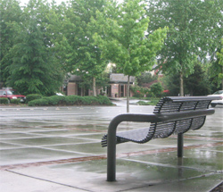 Bench in Redmond